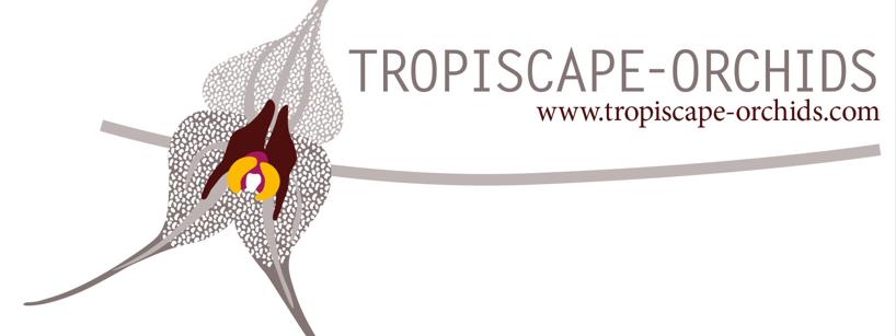 Tropiscape